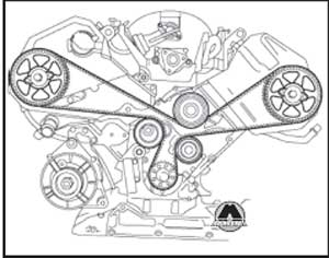 зубчатый ремень Audi A6, зубчатый ремень A6 Avant